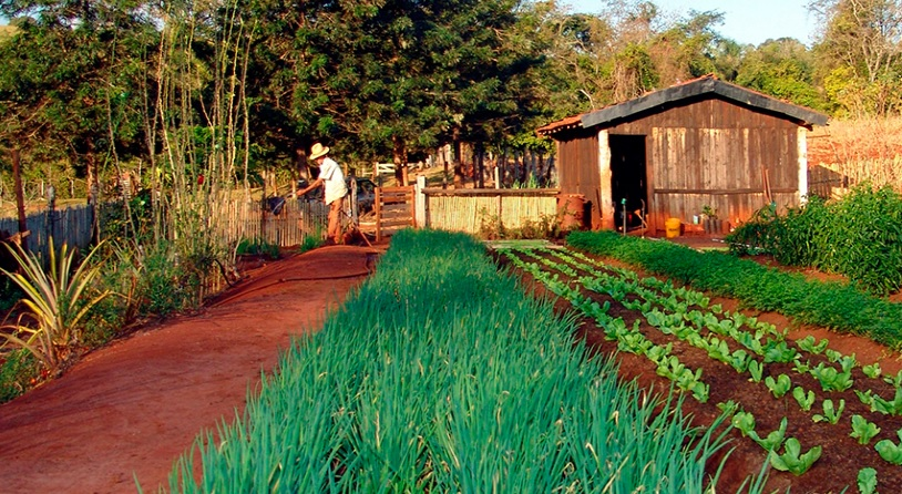 Segurança socioecológica deve ser quarto componente das políticas de sustentabilidade