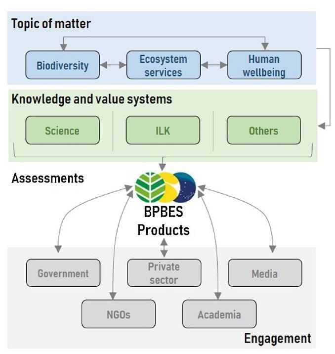 Práticas e resultados da BPBES são descritos em artigo